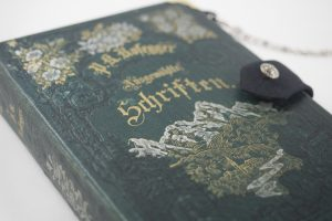 Clutch aus einem Sammelband von Peter Rosegger, das Cover verziert mit Alpen und Blumen, passend zum Dirndl