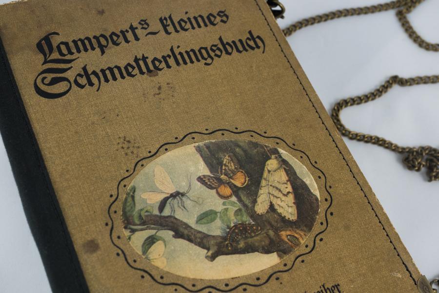 Kleines Schmetterlingsbuch Image